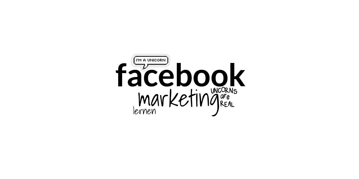 Curso de Marketing Online no Facebook: Anúncio e Curso de Crash de Fãs para Gestores de Mídias Sociais